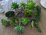 12 mixed artificial succulents